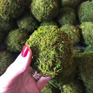 "6PK 4"" Organic Moss Balls Home Decor Decoration"